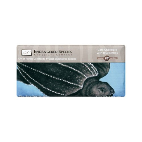 Endangered Species Dark Chocolate Bar Blueberry Turtle